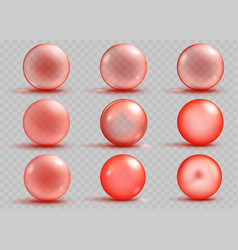 Set of transparent and opaque red spheres vector