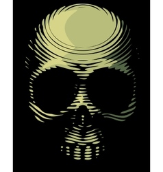 Skull engraving imitation vector