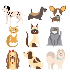 Collection of cats and dogs different breeds vector