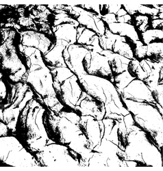 cracked clay ground into the dry season vector image