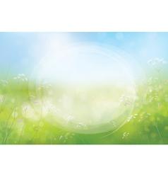 Frame spring vector