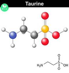 Taurine chemical formula and model vector image vector image