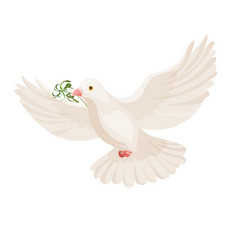 white dove with grass in beak flying bird vector image vector image