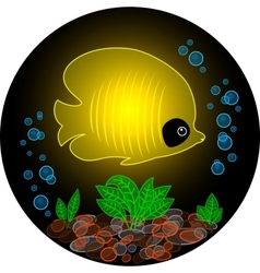 Transparent yellow fish vector