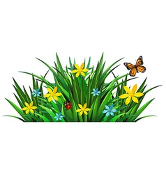 Bush with flowers and insects vector image vector image
