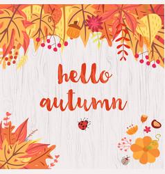 hello autumn design vector image