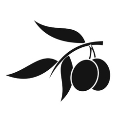 Olive tree branch with two olives icon vector