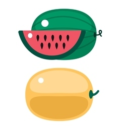 Fresh orange pumpkin and watermelon isolated vector