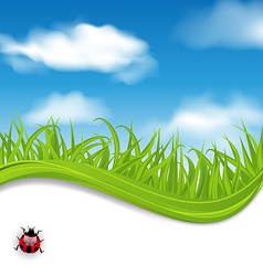 Summer beautiful card nature background vector