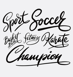 Champion and sport hand written typography vector