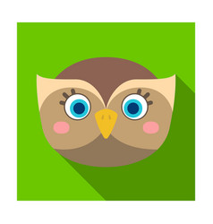 owl muzzle icon in flat style isolated on white vector image