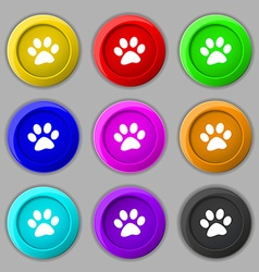Paw icon sign symbol on nine round colourful vector