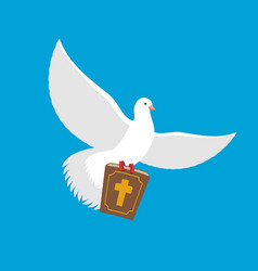 white dove and bible pigeon and holy book religion vector image