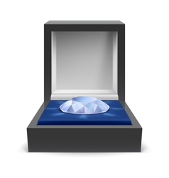 Box for diamond vector image