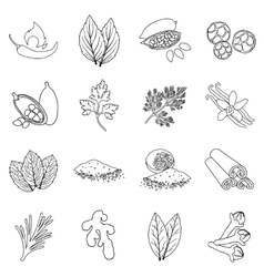 Herb and spices set icons in outline style Big vector image