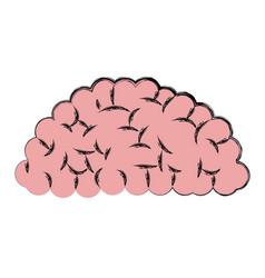 Human brain anatomy idea think vector