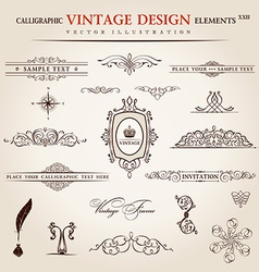 Set calligraphic vintage elements and page vector