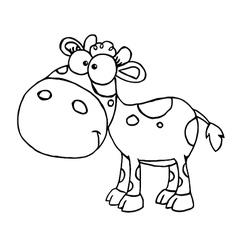 Baby cow cartoon vector