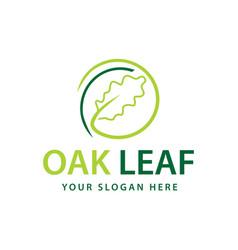 Oak leaf logo vector