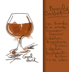 With brandy cocktail vector