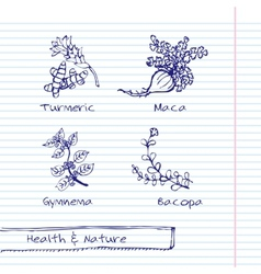 Handdrawn - Health and Nature Set vector image vector image