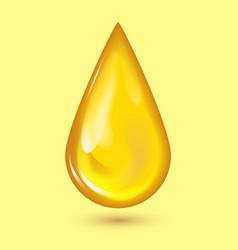 orange honey drop and yellow splashes healthy vector image