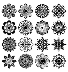 decor flowers set vector image