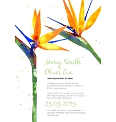 Background with strelitzia flower vector
