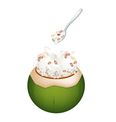 Coconut ice cream with nuts and pearl barley vector
