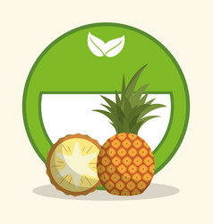 Pineapple organic food diet vector