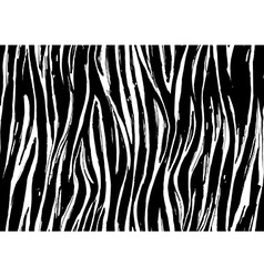 Zebra print seamless background pattern Black and vector image vector image
