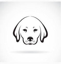 labrador dog head on white background pet animal vector image