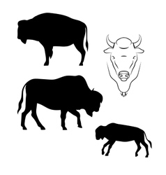 Bison silhouettes vector