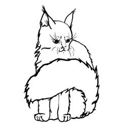 Contour cat portrait vector