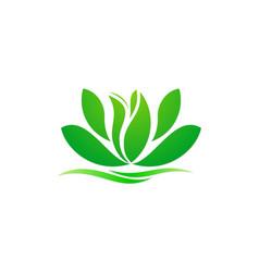 Lotus flower green spa beauty logo vector