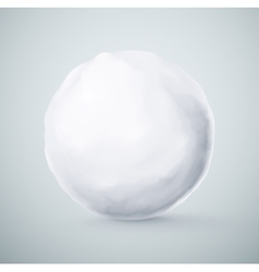 Isolated snowball vector