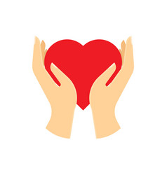 red heart in hand vector image