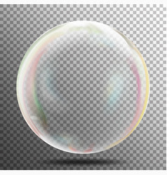 Transparency bubble soap or underwater or water vector