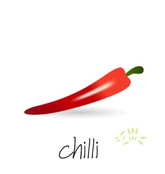 Red hot chilli pepper with seeds and shadow eps10 vector