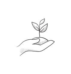 Hands holding seedling in soil sketch icon vector