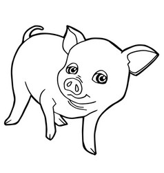 Cartoon cute pig coloring page vector