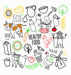Eco products organic food hand drawn doodle vector