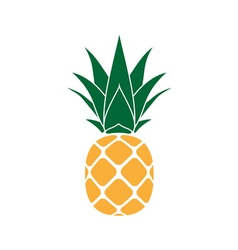 Pineapple with leaf yellow vector image