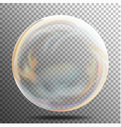 Soap bubble multicolored transparent bubble with vector