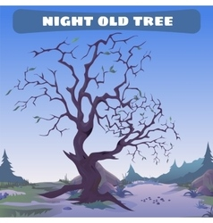 Old dead tree at night vector