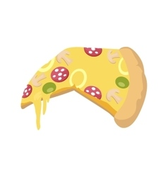 Pizza icon in flat vector