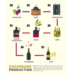 wine making How is made vector image vector image