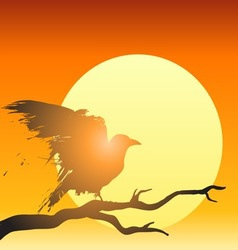 Grunge raven sun vector