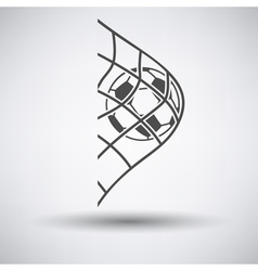 Soccer ball in gate net icon vector image