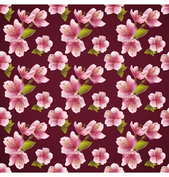 Seamless pattern background with cherry blossom vector image